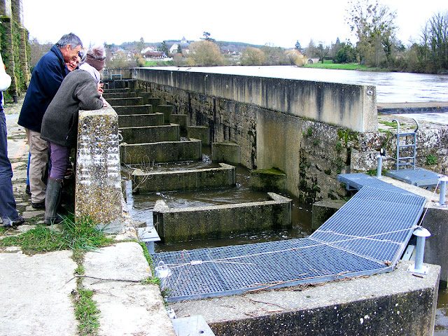 Fish ladder at the papermill, Descartes.  Indre et Loire, France. Photographed by Susan Walter. Tour the Loire Valley with a classic car and a private guide.