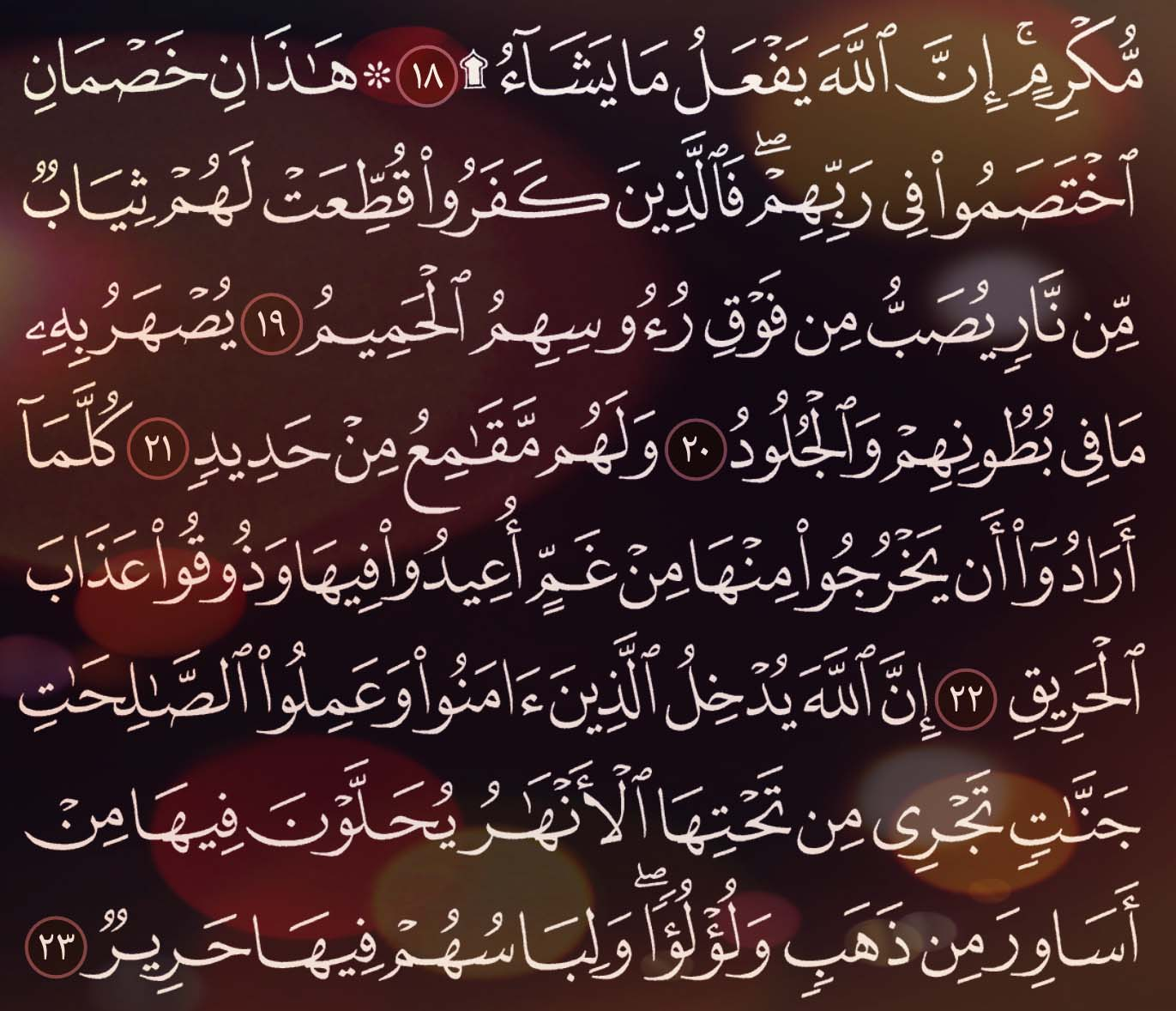 شرح وتفسير سورة الحج Surah Al Hajj ( من الآية 11 إلى الاية 23 )