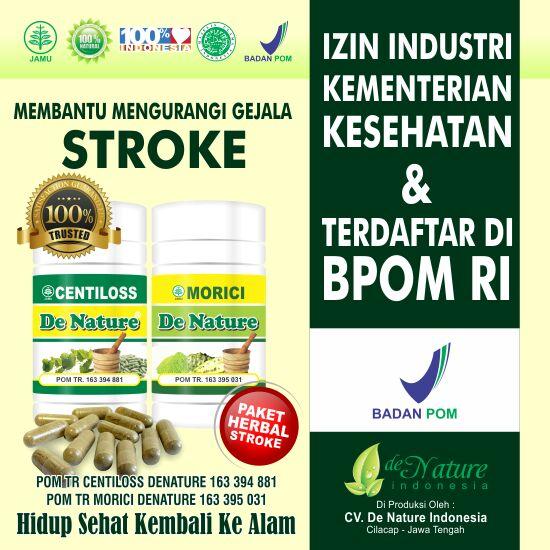 Obat stroke, obat herbal stroke, obat menyembuhkan stroke, obat menangani stroke, obat untuk stroke, obat alami stroke