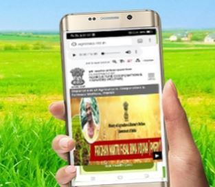 Prime minster Farmer 8th Installment  released under PM Kisan Samman Nidhi NEWS Update : If Prime Minister farmer money does not come in your account, do this work soon
