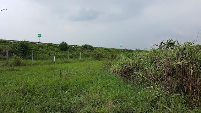 Phía trước là đường cao tốc Long Thành - Dầu Giây