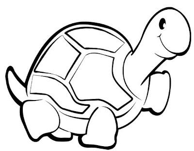 La Chachipedia Tortugas Terrestres Y Marinas Para Colorear