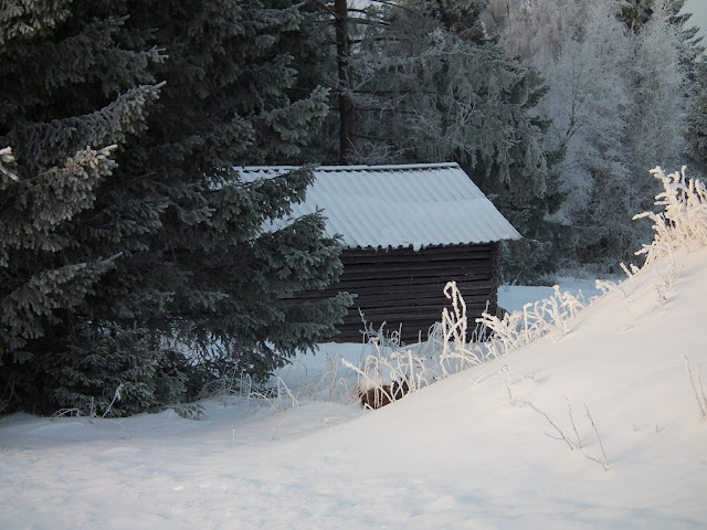 Talvi, lumi, joulu, lato
