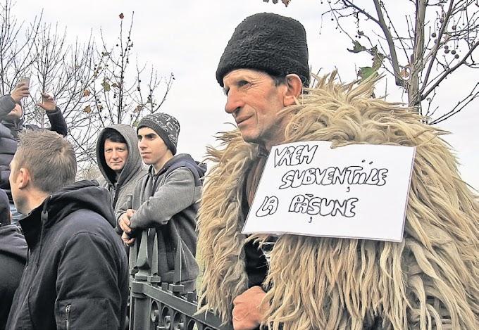 Ciobănia, soluția propusă de primarul Ilie Boncheș pentru locuitorii Dornei