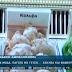 """Το ζαχαροπλαστείο που πουλά παγωτά με γεύση """"κόλλυβα"""" και """"φανουρόπιτα"""" (video)"""