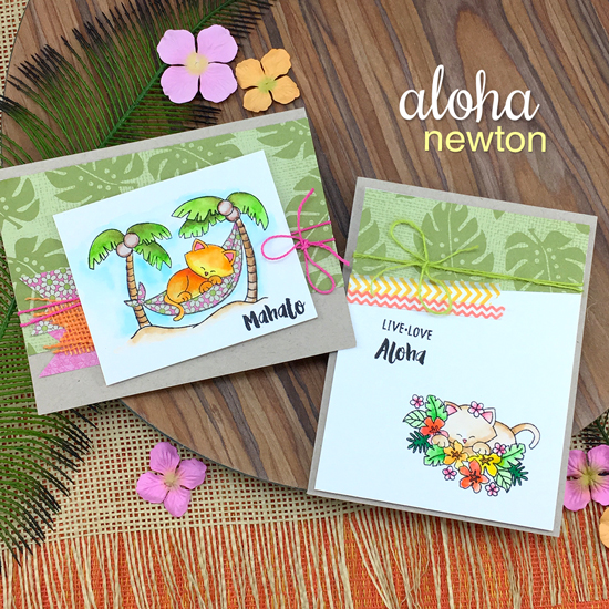 Tropical Hawaii Cat Cards by Jennifer Jackson | Aloha Newton Stamp set by Newton's Nook Designs #newtonsnook