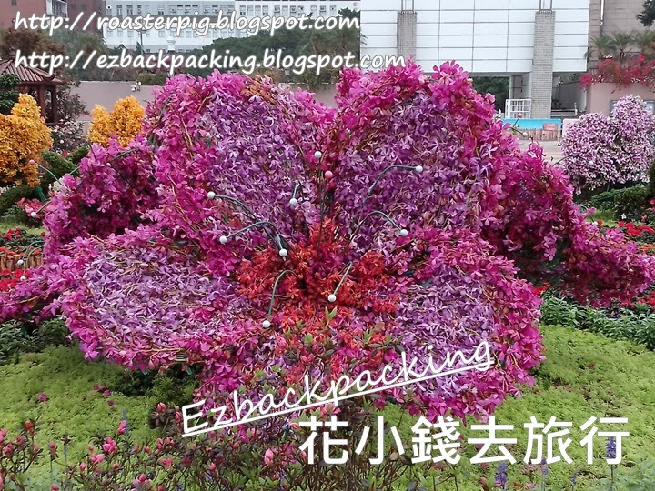 九龍公園杜鵑花