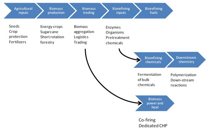 The process of biotechnology