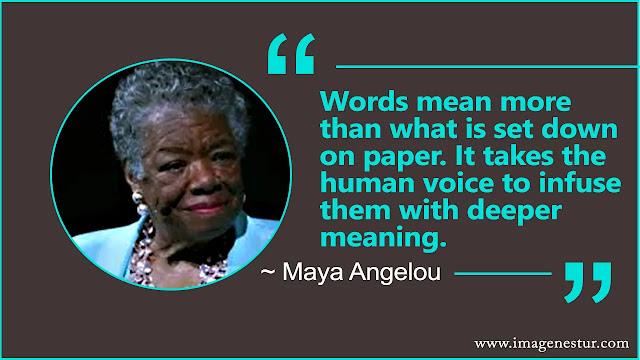 Maya Angelou Quotes About education