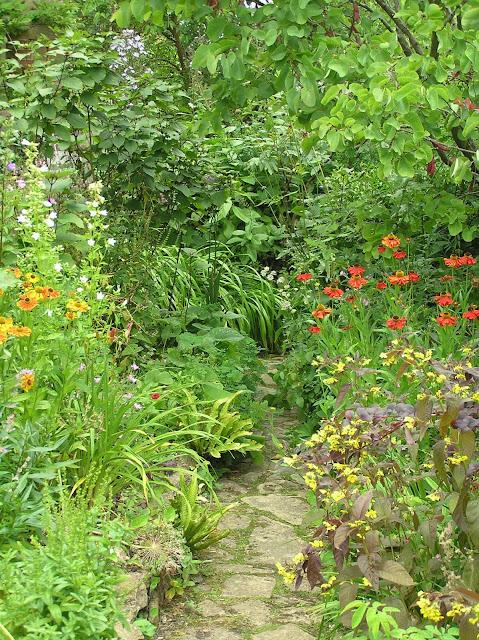 naturalistyczny ogród Margery Fish, kamienna ścieżka