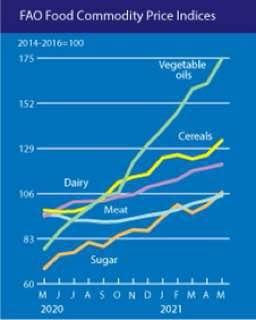 ارتفاع اسعار المواد الغذائية عالميا