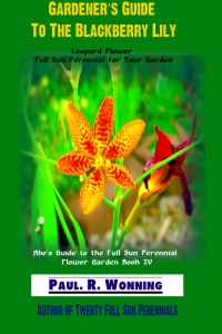 Gardener's Guide To The Blackberry Lily