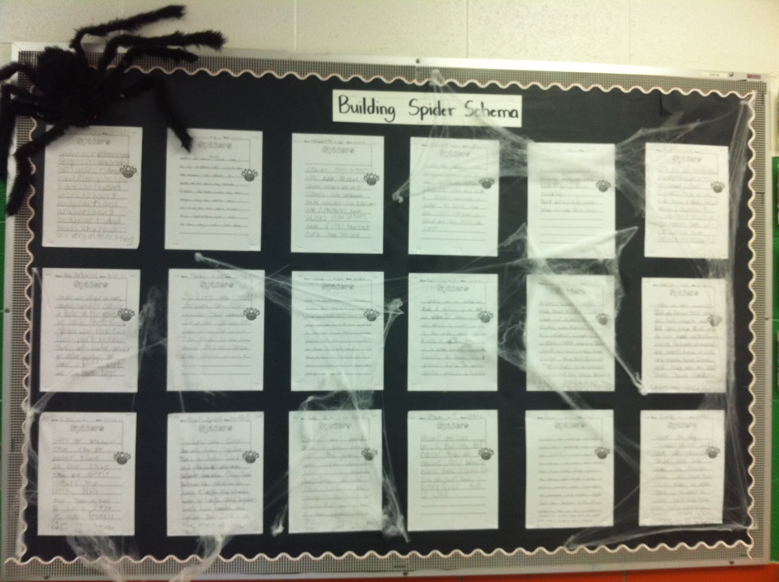 Ms Alley S 2nd Grade Class Spiders