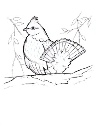 Betsy Ross Coloring Sheet
