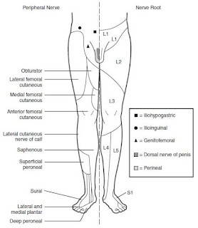 Anesthesia for Lower Extremity Surgery