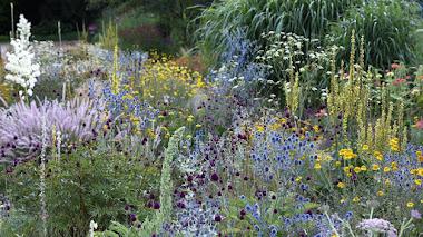 Jardín de pruebas en Weihenstephan, Alemania: plantas vivaces y sus hábitats de jardín