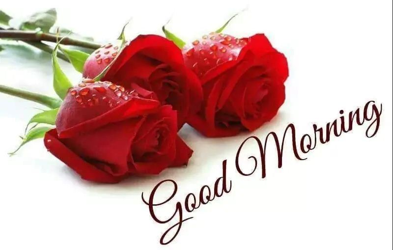 Romantic Good Morning Flowers for Boyfriend
