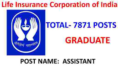 LIC Jobs For Freshers: 7871 Assistant Vacant Posts