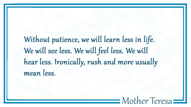 Without patience, we will learn less in life Mother Teresa quotes