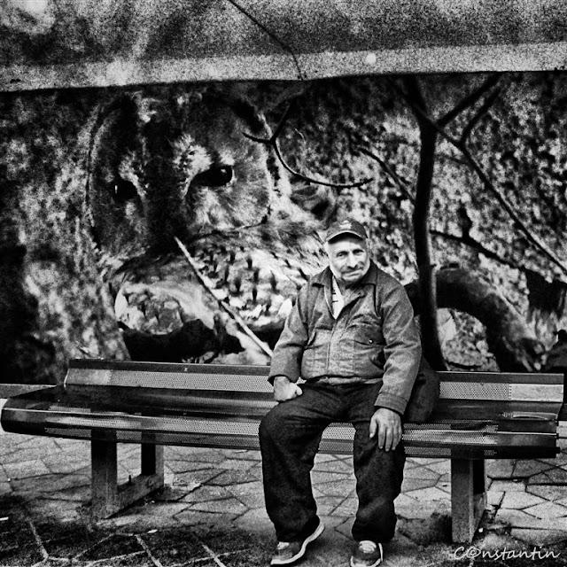 În-statia-de-autobuz-blog-FOTO-IDEEA
