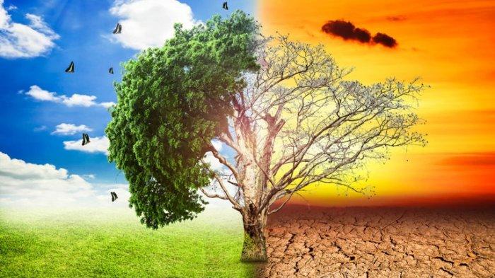 Hasil Studi: 50 Tahun Lagi Bumi Akan Sangat Panas, dan Manusia Bisa 'Terpanggang', naviri.org, Naviri Magazine, naviri majalah, naviri