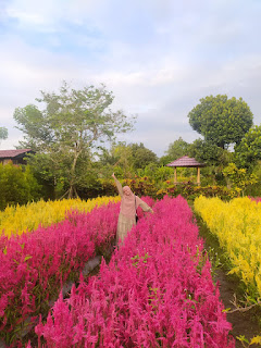 Narmada Botanic Garden