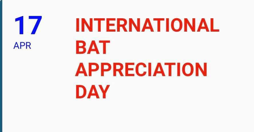 International Bat Appreciation Day Wishes Unique Image