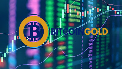 Bitcoin Gold (BTG) is the best performing altcoin in 2019