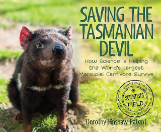 Review of Saving the Tasmanian Devil by Dorothy Hinshaw Patent