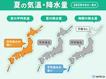 2020北海道富良野薰衣草+花田開花情報