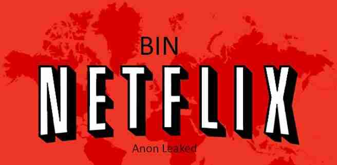 List of BINs That Work For Netflix Payments