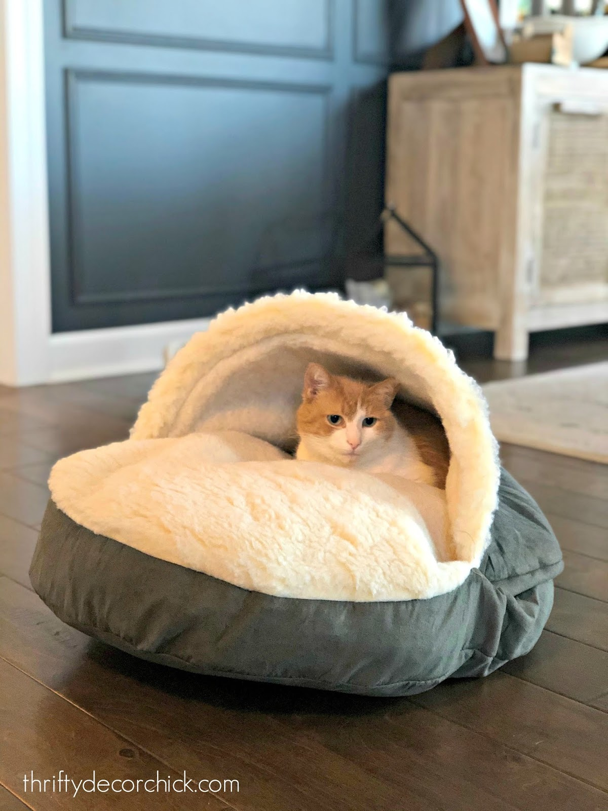 Snoozer pet bed