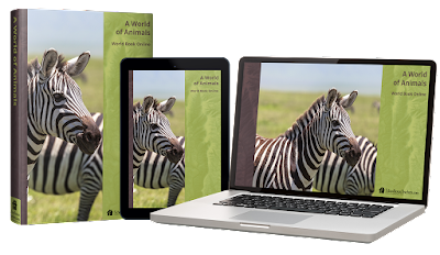World of Animals course image on book, tablet, and laptop