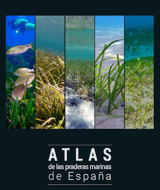 http://www.ecologialitoral.com/nuestro-trabajo/proyectos/nacionales/atlas.html