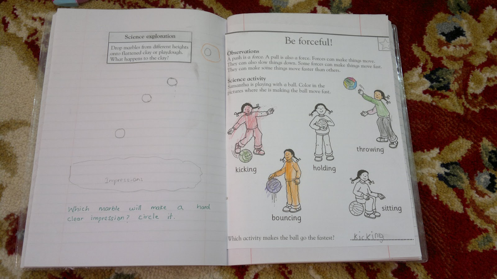 worksheet Push And Pull Worksheets umm maimoonahs journal push pull float sink she completed the worksheet identifying which force will move things fast and slow