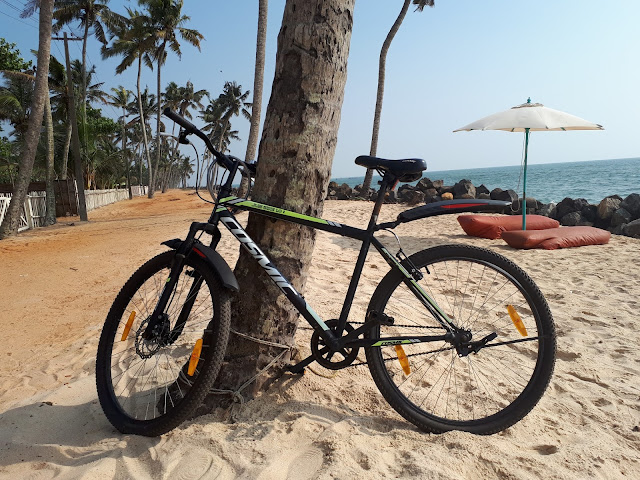 Mon vélo de location