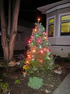 Holiday yard tree