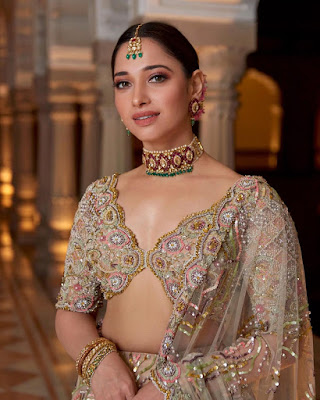 Tamannaah Bhatia (Indian Actress) Biography, Wiki, Age, Height, Family, Career, Awards, and Many More