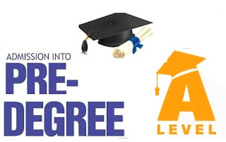 Compare Predegree/Remedial with IJMB/JUPEB and Other A'level Programmes