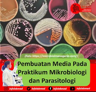 Pembuatan Media Pada Praktikum Mikrobiologi dan Parasitologi