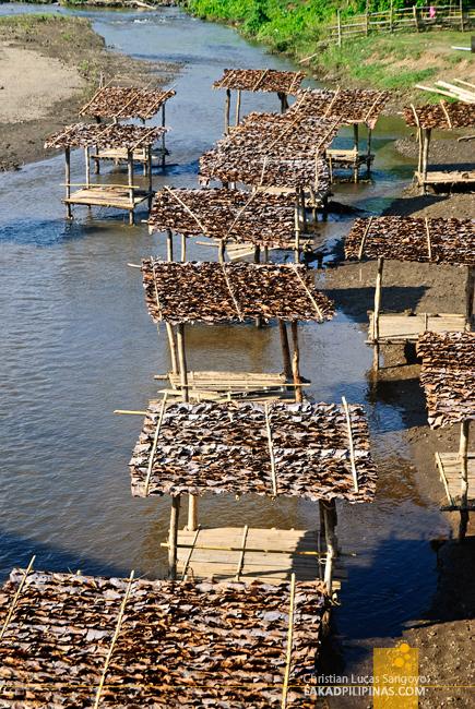 Pai River, Thailand