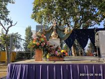 Recull de fotografies de la celebració de les festes de la Mare de Déu de Misericòrdia
