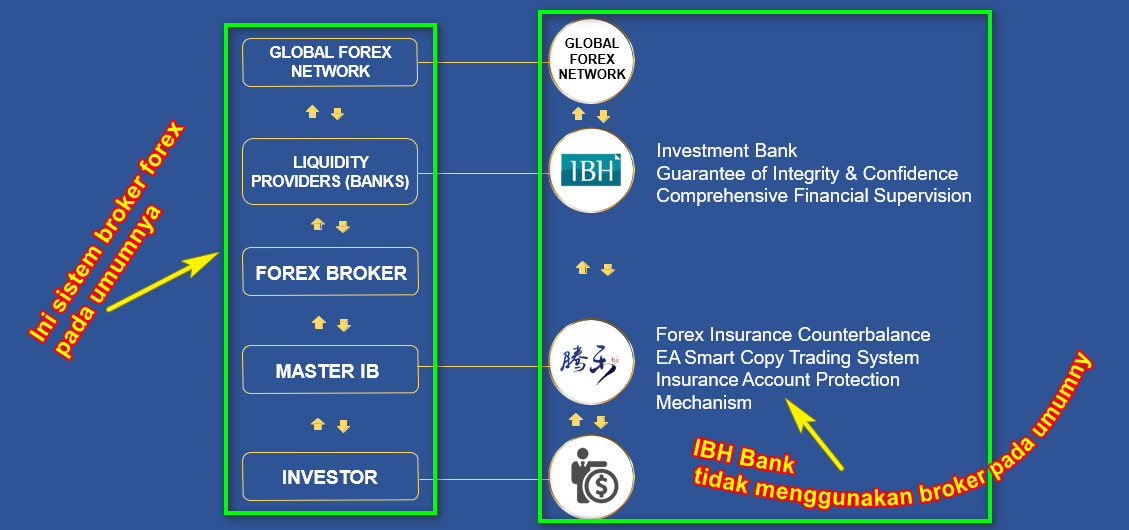 Trading Forex bersama IBH Invesment Bank NO LOSS - Only Profit