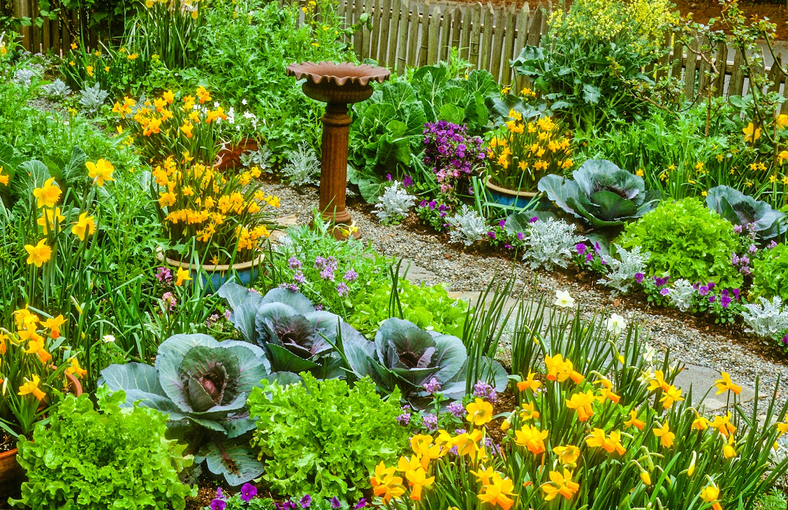 Ask a master gardener explore edible landscaping its fun and productive Flowers to plant in vegetable garden