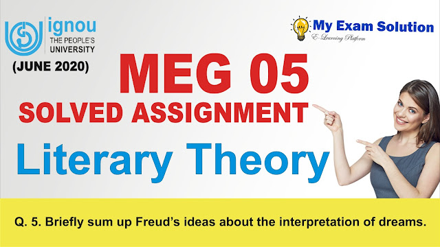 literary theory assignments, meg 05, meg  05 literary theory assignments