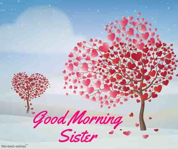 good morning sister pic