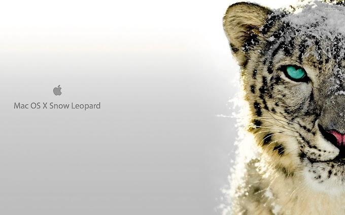 Cómo instalar Mac OS X 10.6 Snow Leopard en un Mac PowerPC