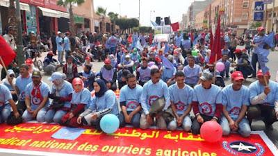 النقابة الوطنية للعمال الزراعيين