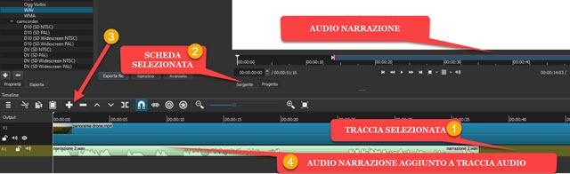 aggiunta di registrazione audio a traccia timeline