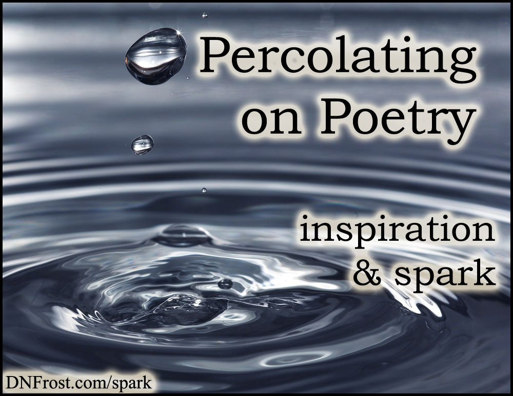 Percolating on Poetry: new notions of meter and rhyme http://www.dnfrost.com/2017/05/percolating-on-poetry-inspiration-spark.html #TotKW Inspiration and spark by D.N.Frost @DNFrost13 Part 2 of a series.